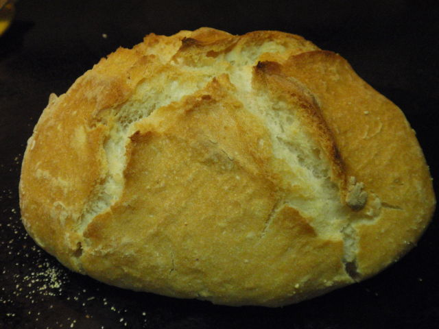 This is hands down the best bread I have ever made!