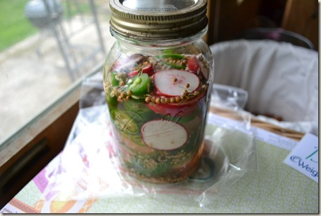 pickles 002