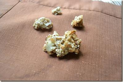 granola 005
