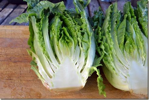 salad 011
