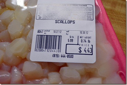 scallop 025