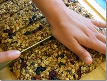 pinterest granola