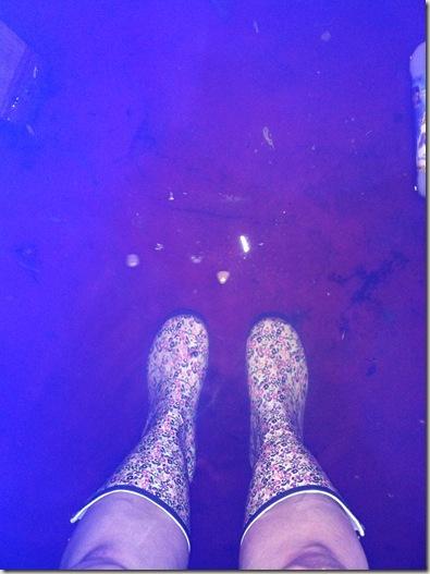 flood 022